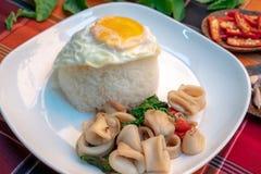 Licença fritada da manjericão com alimento tailandês do calamar foto de stock