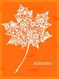 Licencia anaranjada Foto de archivo libre de regalías
