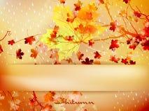 Licencia de otoño hecha de triángulos EPS 10 ilustración del vector