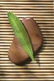 Licencia de piedra de la pizca Fotos de archivo