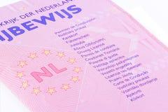 Licencia de programas pilotos. Foto de archivo libre de regalías
