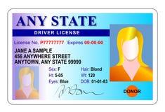 license för kortchaufföridentitet Arkivfoto