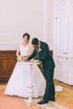 Licenza di matrimonio di firma dello sposo e della sposa Immagini Stock