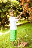 Lichíes de la cosecha del muchacho Foto de archivo libre de regalías