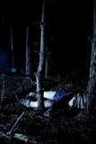 Lichaam in hout bij nacht Stock Afbeeldingen