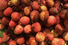 Lichee, lichi lub lychee ËŒlaɪˈtʃiË , zdjęcia royalty free