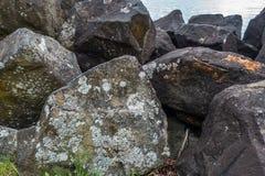 LIchen On Boulders imagenes de archivo