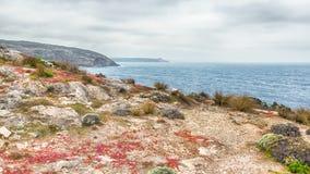 Lichen, Cape Du Couedic, crique de déversoir, roches remarquables, Flinders Photo stock