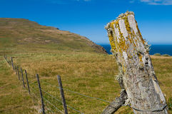 Lichen covered fence post Stock Photo