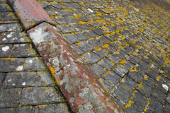Lichen covered tiles on a cornish stone roof Stock Photos