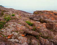 Lichen Festooned Rock Formations Photo stock