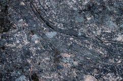 Lichen on gray rock. Red lichen on gray rock royalty free stock image