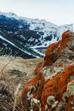Lichen. S on the rock and mountains in the background stock photography