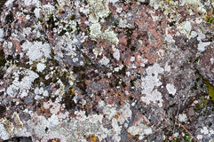 Lichen and moss on an old rock Stock Photo