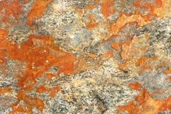 Lichen orange sur la roche alpes européennes plein backgro naturel de cadre Photographie stock