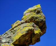 Lichen Point Stock Photography