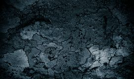 Lichen on rock abstract background/ Abstract backdrop of lichen and stone / Rough texture background. / Black textured background Stock Images