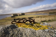 Lichen on rock rusty chain Royalty Free Stock Photo