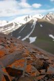 Lichen rocks. Kyrgyzstan Stock Photo