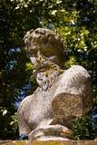 Lichen statue Stock Images