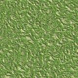 Lichen texture Stock Photos