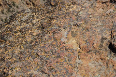Lichen and weathered rhyolite Stock Photo