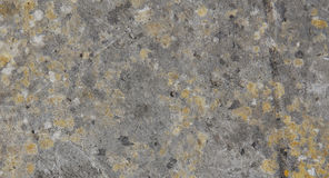 Lichened granite rock Royalty Free Stock Photos