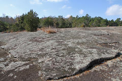 Lichens and moss covering a granite rock outcrop Stock Images