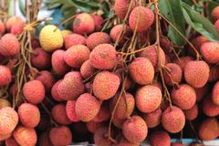 Lichi maduro en el mercado Fotos de archivo