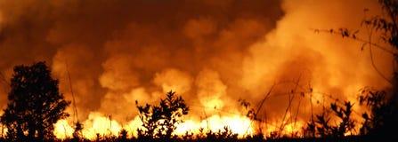 LICHOTA ogień W FLORYDA Obrazy Royalty Free