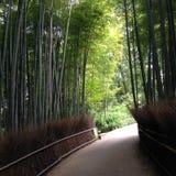 Licht am Bambustunnel Lizenzfreie Stockfotografie