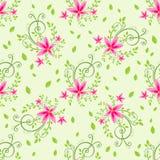 Licht bloemen naadloos patroon Stock Afbeeldingen