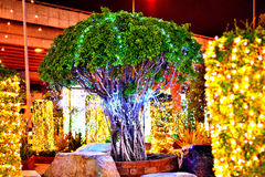 Licht des Baums und des bunten Neons Stockfotografie
