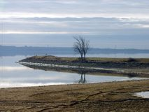 Licht des frühen Morgens über dem See stockbild