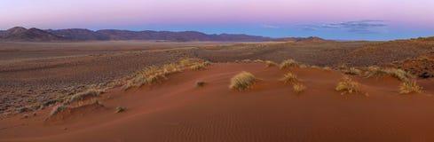 Licht des frühen Morgens im Kalahari Lizenzfreie Stockbilder