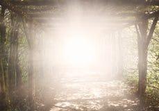Licht in donkere hemel De achtergrond van de godsdienst Jesus in de hemel royalty-vrije stock foto