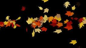 Licht falling&flare Urlaub des Ahornblattes 4k, romantischer Partikel des Herbstfalles künstlerisch stock video footage