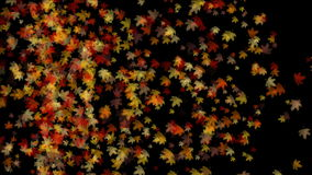Licht falling&flare Urlaub des Ahornblattes 4k, romantischer Partikel des Herbstfalles künstlerisch stock footage