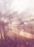 Licht gesprengt unter Wiesenbäumen Gefiltertes Bild lizenzfreie stockbilder