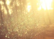 Licht gesprengt unter Wiesenbäumen Gefiltertes Bild stockfoto