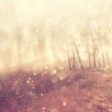 Licht gesprengt unter Wiesenbäumen Gefiltertes Bild stockfotos