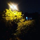 Licht mit Lampe Stockbilder