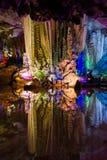 Licht omhoog van de Zilveren Holen van Guilin Royalty-vrije Stock Fotografie