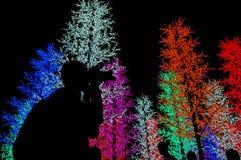 Licht silhouet Royalty-vrije Stock Fotografie