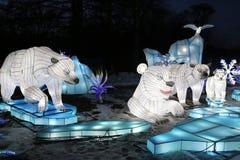 Licht toon van Chinese lantaarns in een botanische tuin stock foto's