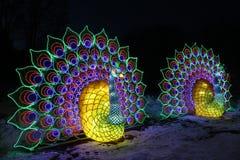 Licht toon van Chinese lantaarns in een botanische tuin royalty-vrije stock afbeeldingen