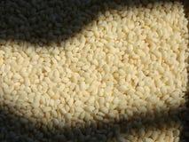 Licht und Reis lizenzfreie stockfotos