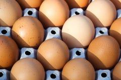 Licht und Schatten auf Eiern Stockbilder