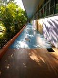Licht und Schatten auf Farbkorridor Stockbilder