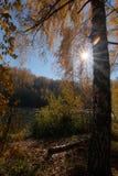 Licht van de herfst royalty-vrije stock foto
